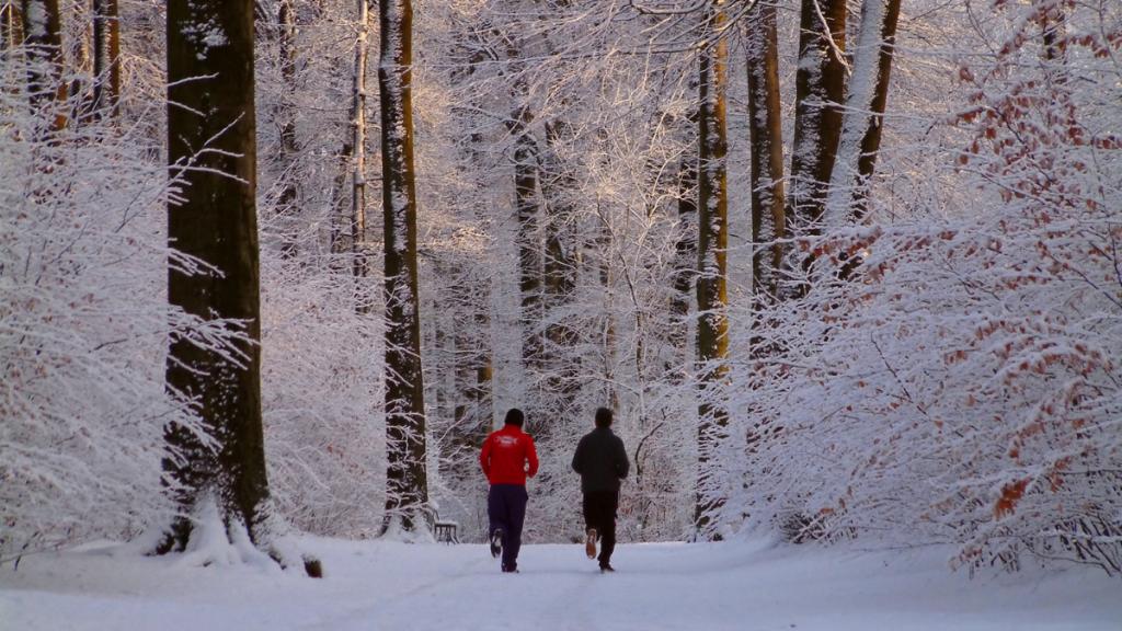sports hiver écolo