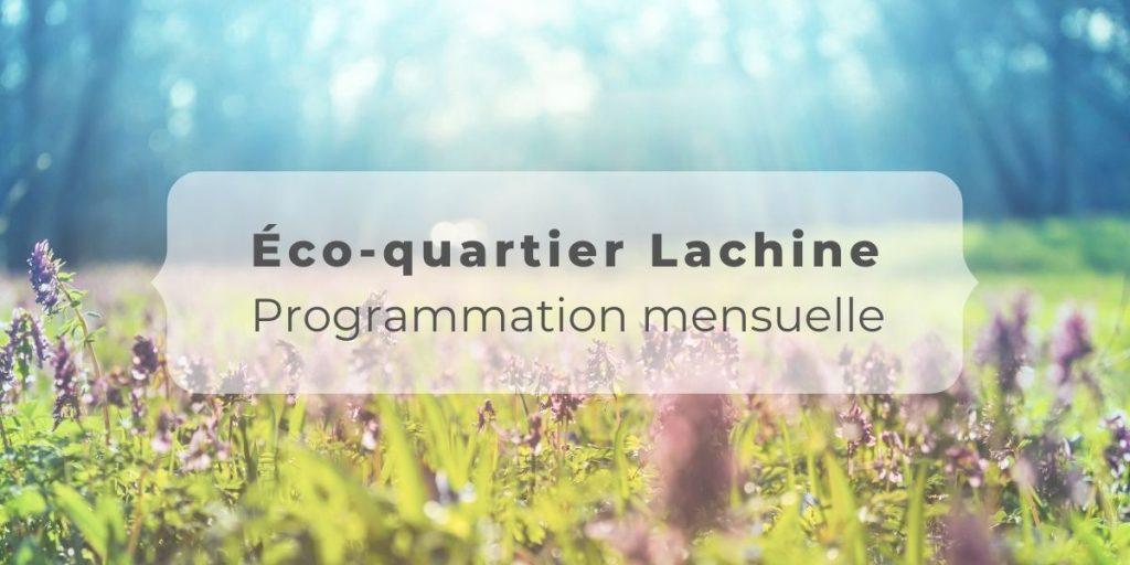 Header article programmation mensuelle