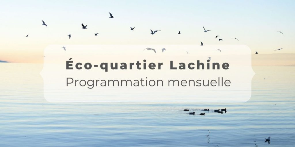 Programmation juin Éco-quartier
